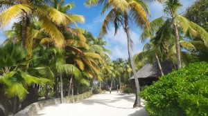 Palm Island, Caribbean