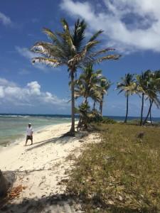 Petit Tabac, Tobago Keys, Caribbean